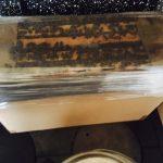 pasieka przenosna pszczoly